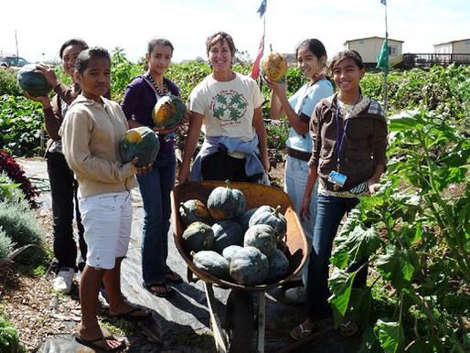 3 Akamai (Smart) Tips for Gardening in Hawaii