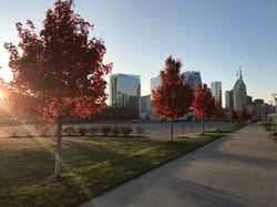 Nashville Skyline Autumn