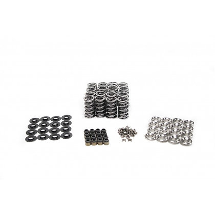 "BTR .660"" Lift Platinum Spring Set w/Titanium Retainers for ZR1/LS9"