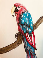 World Parrot Day! Happy Memorial Day!.jp