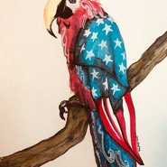 World Parrot Day + Happy Memorial Day!
