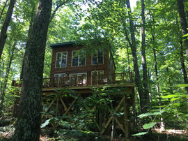 Sidney Nook Treehouse