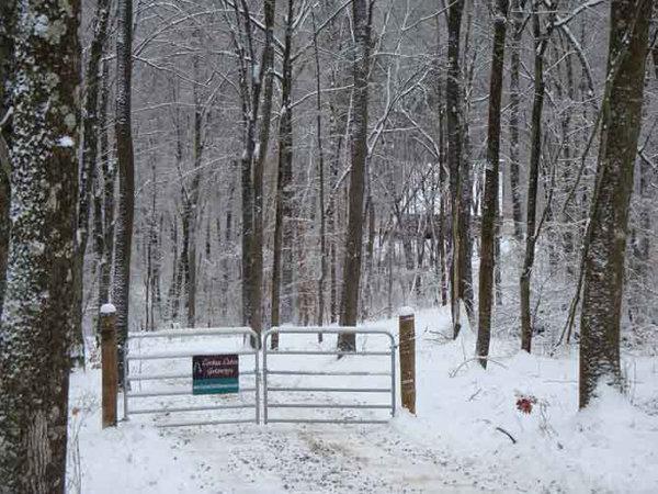 Sieri Glen Cabin Driveway
