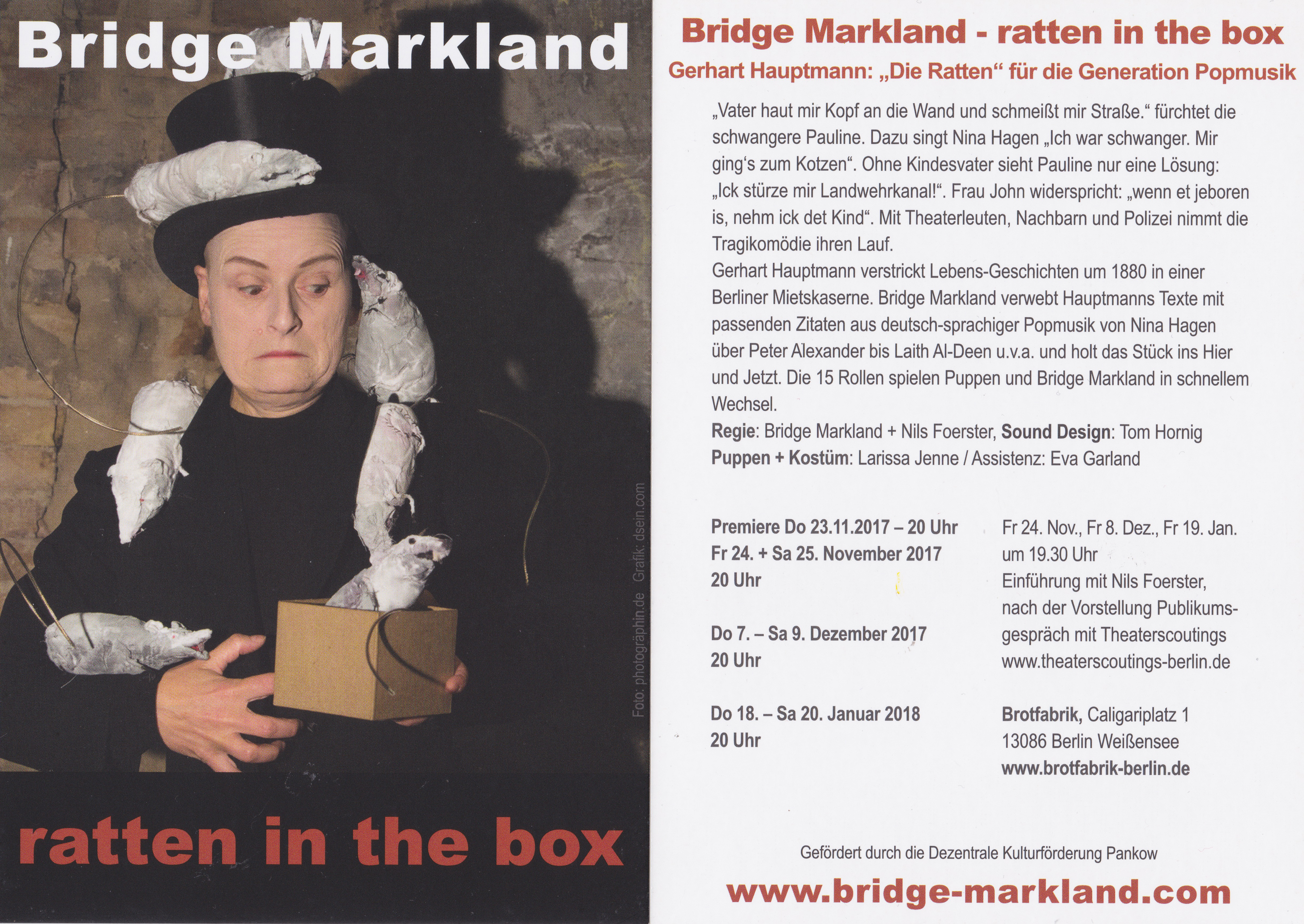Ratten in the box_ Bridge Markland