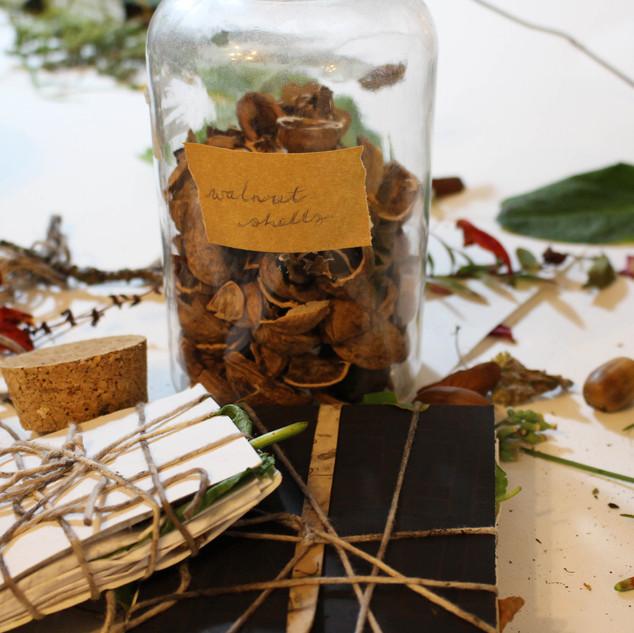 walnut shells.jpg