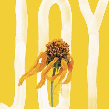 Erin McGraw's 'Joy' Helps Us Understand Strangers