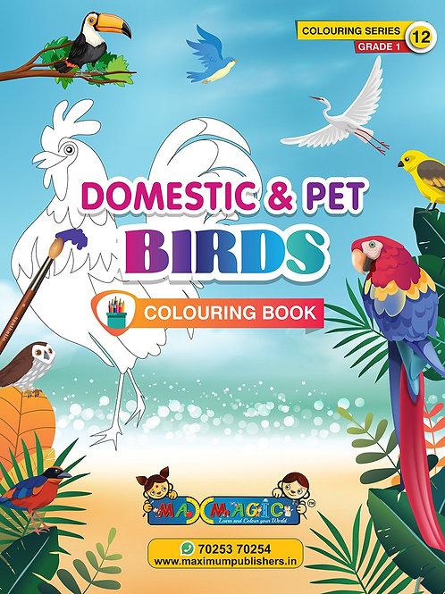 Domestic & Pet Birds Colouring Book (with description) For PRE-KG, LKG ,UKG Kids
