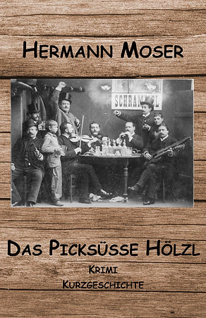 Hölzl_Cover_bookrix.jpg