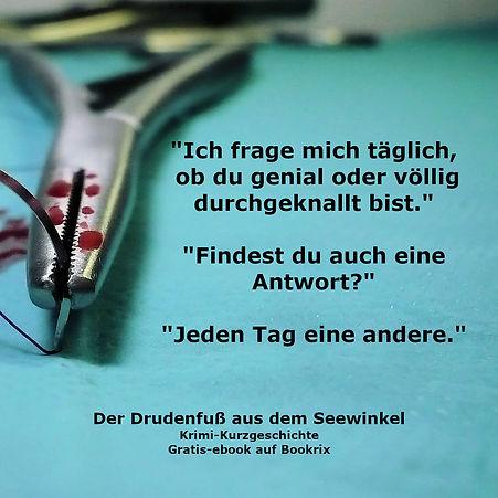 Drudenfuß_Zitat_FB_bookrix.xcf.jpg