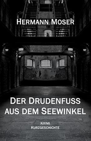 Drudenfuß_Cover_bookrix.jpg