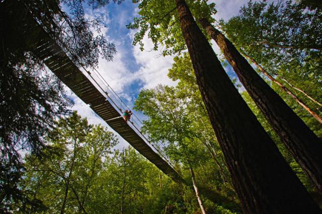 Swinging Bridge @ Regional Park