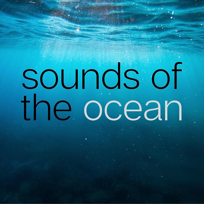 Santa Barbara, CA - Sounds of the Ocean