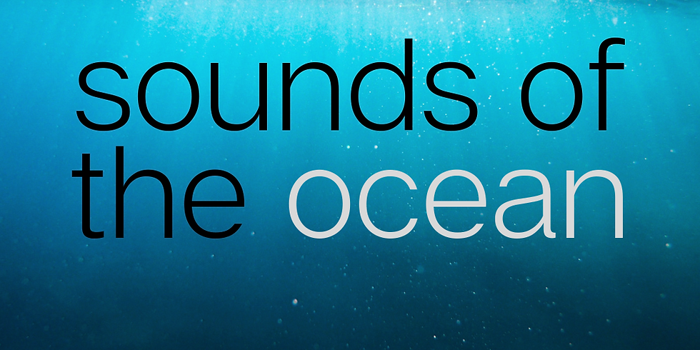 Santa Cruz, CA - Sounds of the Ocean (1)