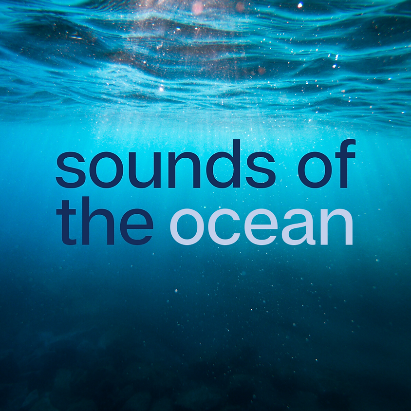 Sounds of the Ocean: A soundbath to connect with the Ocean.