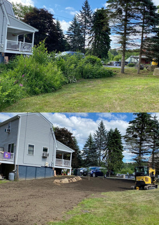 Yard Clearing.  Before & After