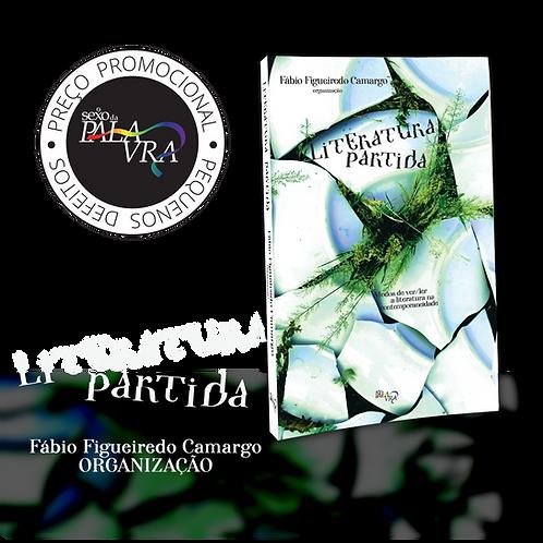Literatura partida: Modos de ver/ler a literatura na contemporaneidade