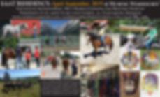 Internship flyer.jpg