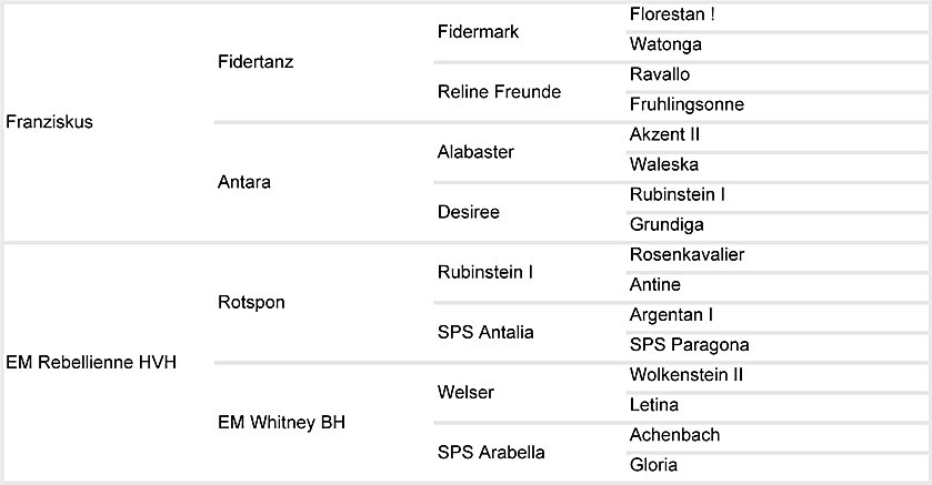 Franziska Pedigree Chart.jpg