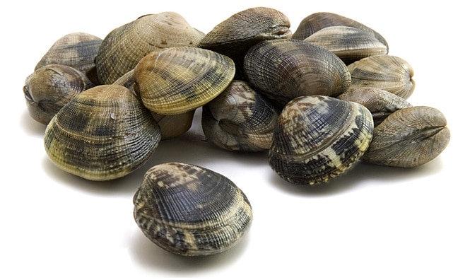 359. Palourdes - 17,80€/kg