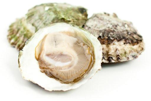 342. Huîtres plates n°3 de Zélande - 39,90€/bourriche