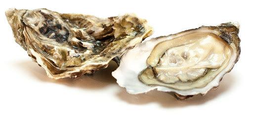 339. Huîtres creuses n°3 Gillardeau - 63,90€/bourriche