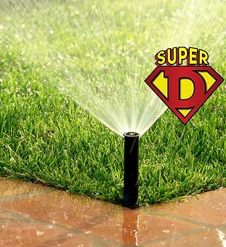 irrigation superdpest.png