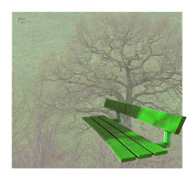 fliegende Bank-03.jpg