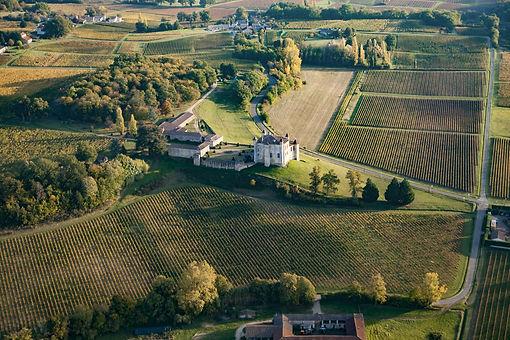 Castillon Côtes de Bordeaux, Saint-Émilion, château, châteaux, wine, wines