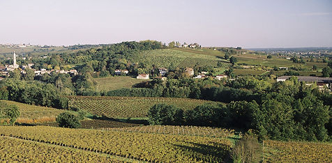 Entre Deux Mers Haut Benauge Bordeaux wine chateau France