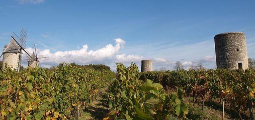 Château Beausejour Montagne Saint-Émilion, châteaux, wine, wines
