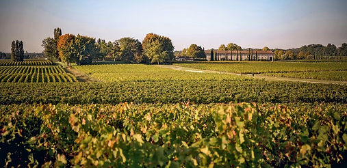 Château Clarke, Listrac Médoc, wine vineyard, France, cru