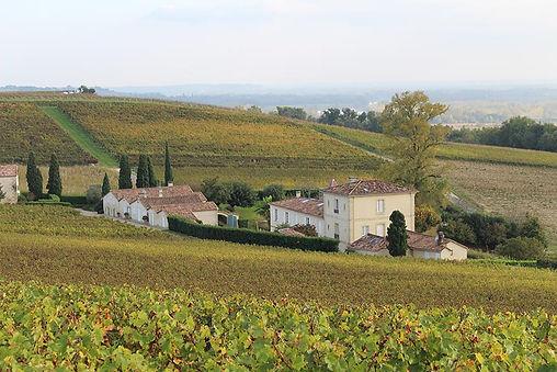 Château Biac, Cadillac Côtes de Bordeaux, Entre-Deux-Mers, château, châteaux, wine, French wines, France, vineyard cru