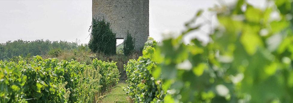 Château Ducrose, Loupiac, Bordeaux, Entre-Deux-Mers, château, châteaux, wine, French wines, France, vineyard cru