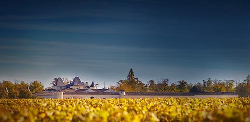 Château Suduiraut, Sauternes, Graves, châteaux, wine, French wines, France, vineyard cru