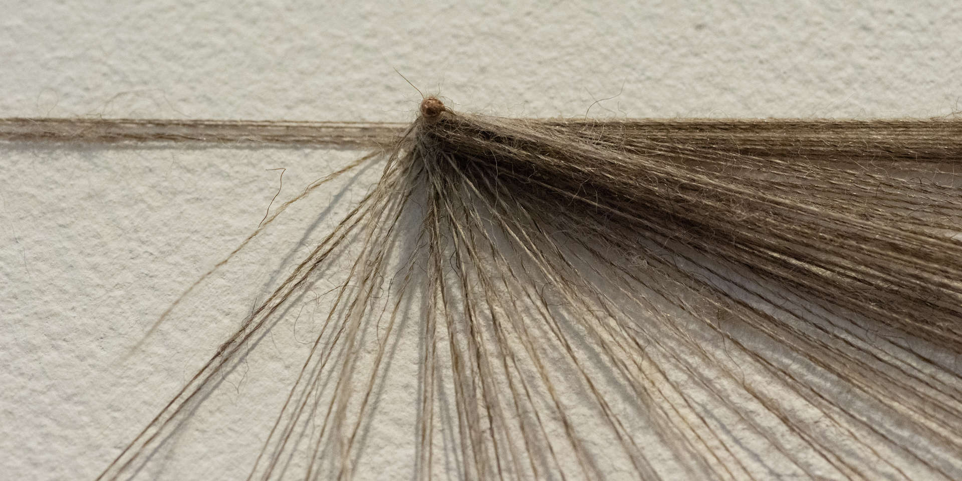 Strands of Thought, (detail2); nails, wool, tags, clips, digital imagery; 430x240cm; photo A Thompson; Fiona Percy 2018