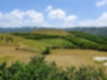 Ayiti Land of mountains
