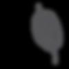 cibula-Vcelobal-znovu-pouzitelne-voskova