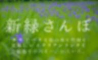 047-新緑2018.jpg