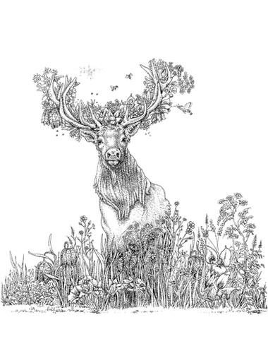Floral Deer/Preparation Drawing