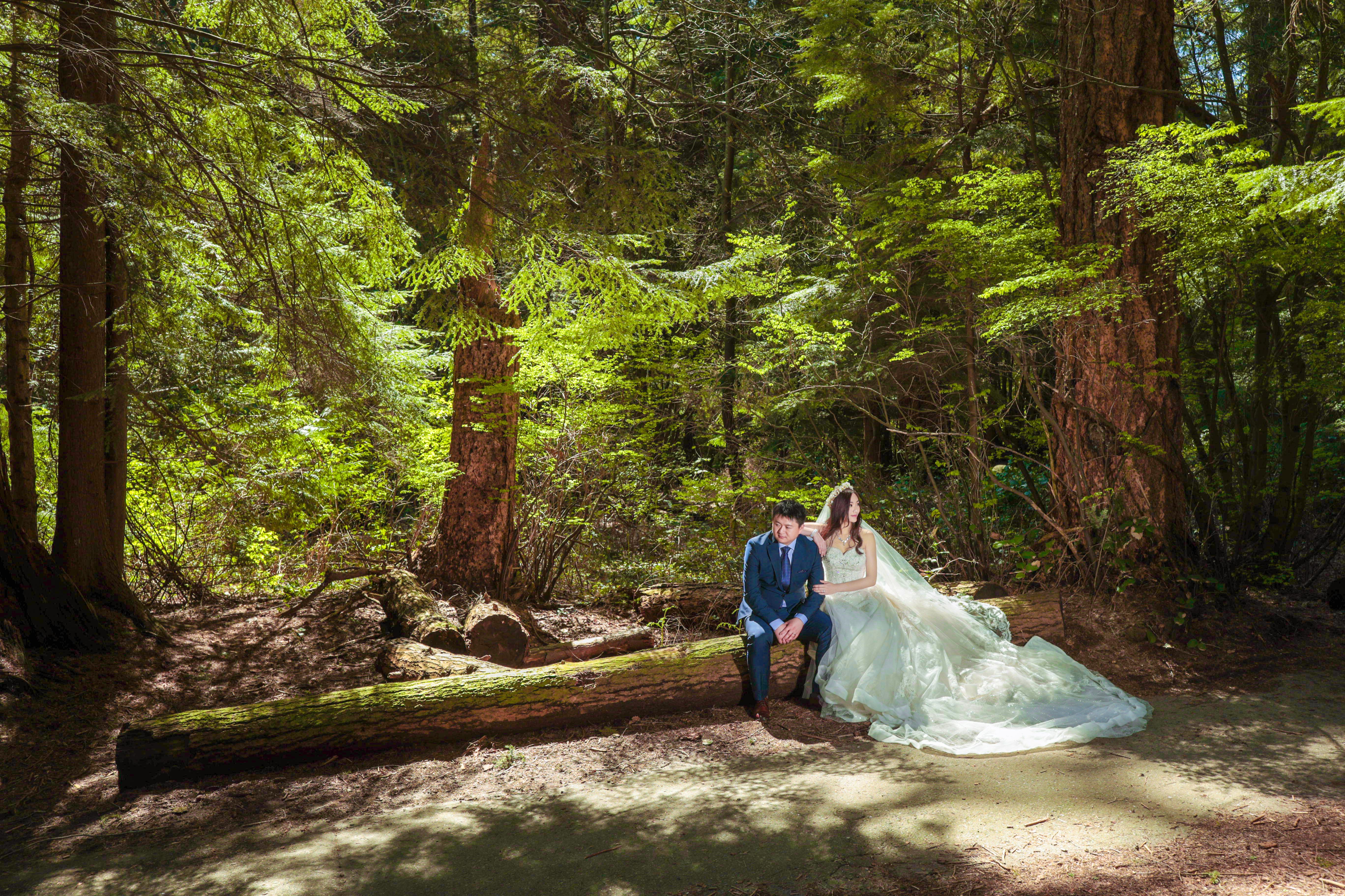 温哥华史丹利公园婚纱照