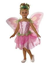 882730_fairy_petal.jpg