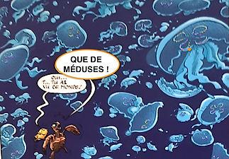 Méduses.jpg