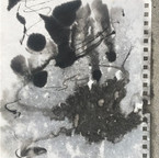 Wetting the entire paper and dripping India Ink on the paper.