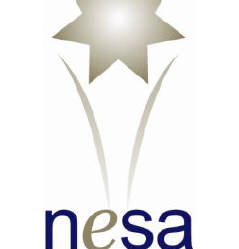 NESA 2017 Awards for Excellence Finalists