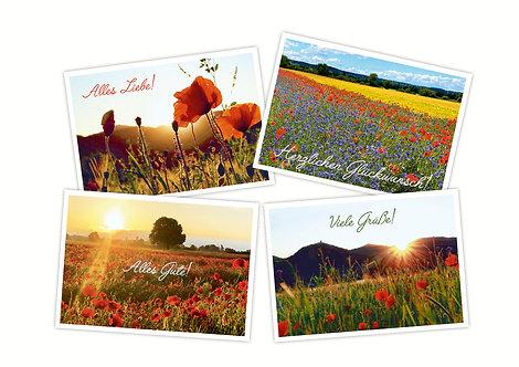 Grußkarten Flora - verschiedene Motive  4-seitig A6 inkl.Hüll