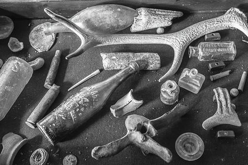 low tide finds . copyright Rolf Nobel