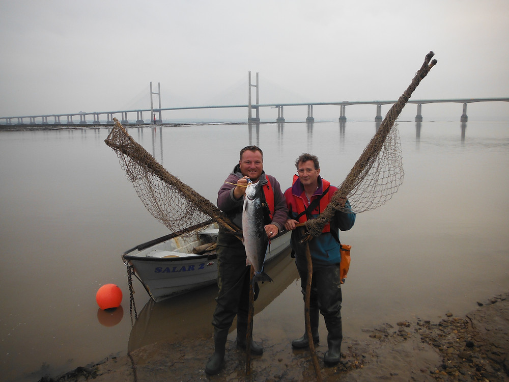 Will loram Recorded the 1st salmon of the season