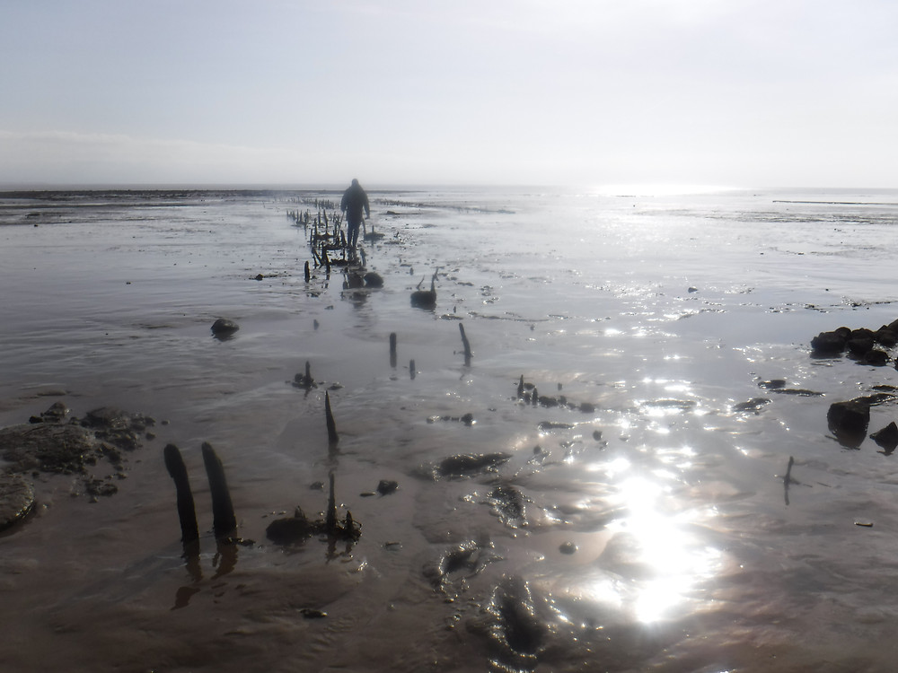 An ancient fishing station on the estuary