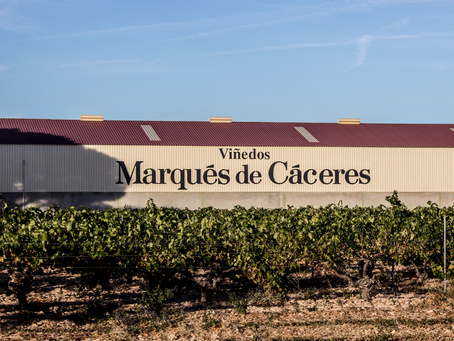 Marqués de Cáceres named most influential Rioja brand.