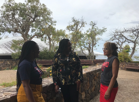 Howard University Researchers Visit St. Thomas And Puerto Rico To Evaluate Emotional Impact Of Hurri